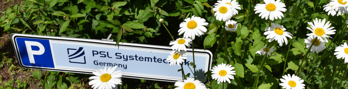 PSL Systemtechnik, Osterode am Harz, Germany, Customer car park with daisies